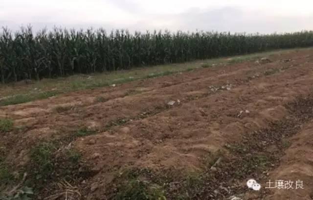 耕地土壤亚健康 农民施肥要手下留情