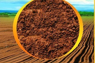 果树追肥需了解肥料酸碱性