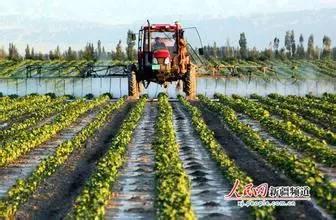 叶面肥的正确使用方法以及使用浓度问题