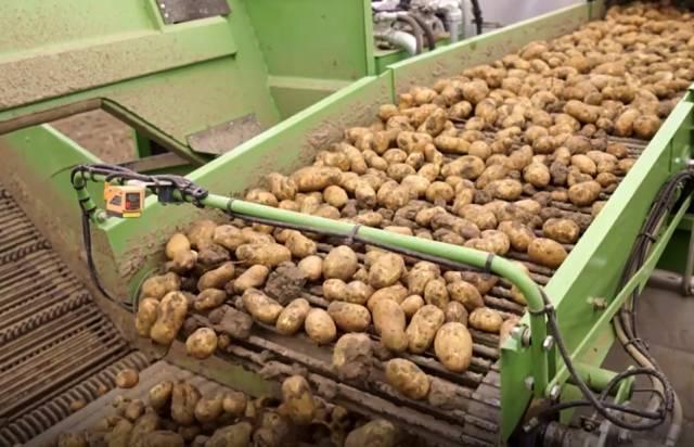 荷兰精准农业再升级
