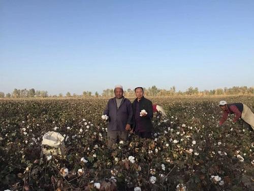 成都华宏合作共青团农场  开启3500亩盐碱地改良示范