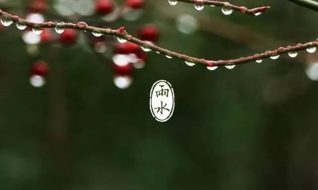 中国25位碳氢领袖雨水节向春耕大忙碳氢家人表达雨水柔情
