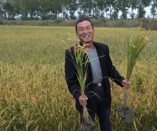 土壤与农民渴望生态肥