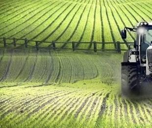 科学种植成农业焦点,中央财政安排25.6亿元支持耕地轮作