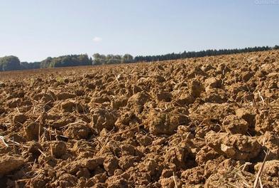 棚里土壤恶化改良从何做起