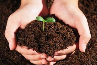 阿坝州推配方施肥提土壤肥力 减环境污染