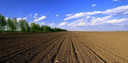 """胡振琪:我的""""土地复垦与生态修复""""观"""