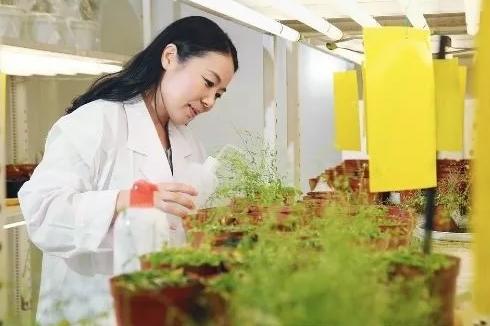 """廖红:和土壤""""对话""""的女科学家"""