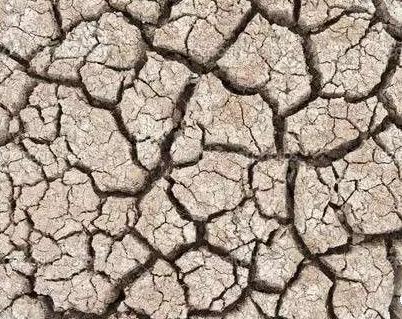土壤板结形成的主要原因以及消除办法
