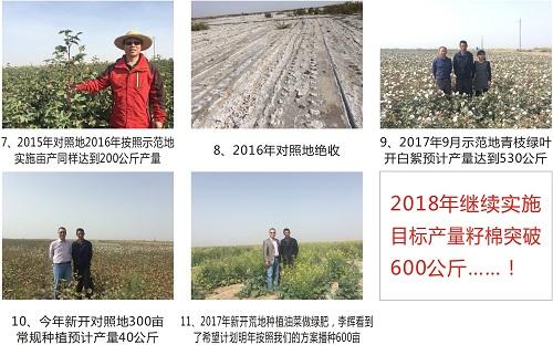 12年专注土壤改良服务商在第十九届全国肥料双交会展风采