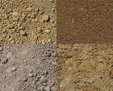 揭秘土壤的文化密码:我们每天消耗的80%以上的热量、75%的蛋白质和植物纤维都来自于土壤。