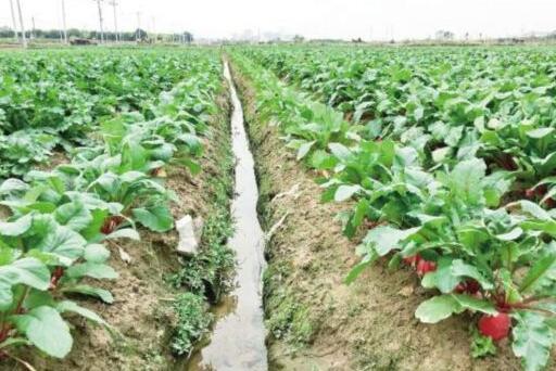 厦门13日再次实施人工增雨 同安翔安农田多数土壤变湿润