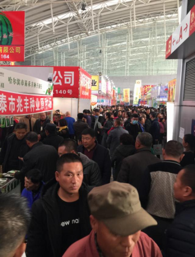 牢记使命 不忘初心 第23届哈尔滨种业博览会圆满收官