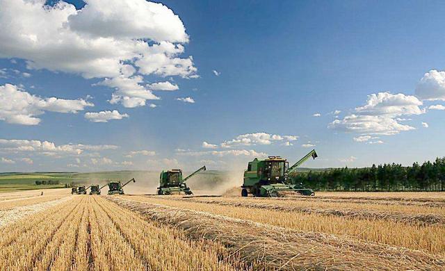 农业入行陷阱多,一个不小心就可能血本无归