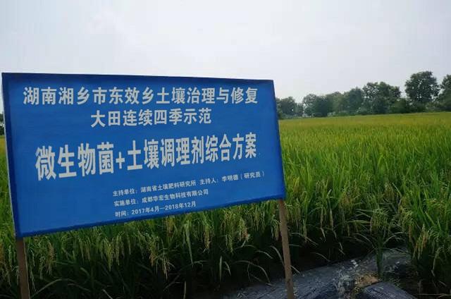 成都华宏生物耕地土壤镉污染治理实验喜获成功