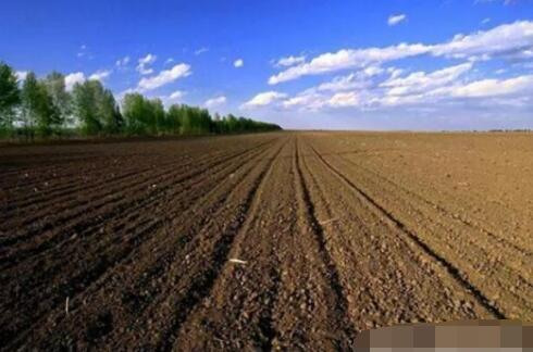 """土壤修复藏商机:团粒技术为作物提供""""精粮"""""""