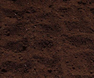 两项土壤污染标准获审 铅污染限值等大幅收紧