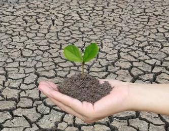 我们的土壤老了,病了?