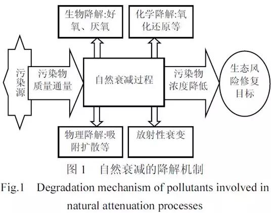 土壤和地下水污染的监控自然衰减修复技术研究进展