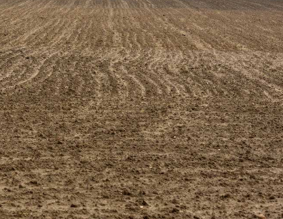 即墨区首次利用生物炭进行土壤改良