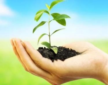 """腐植酸是土壤的""""脑黄金"""",想要高产离不了它"""