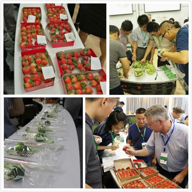 直击中国果蔬产业痛点,云种养与瓦大开展采后保鲜培训