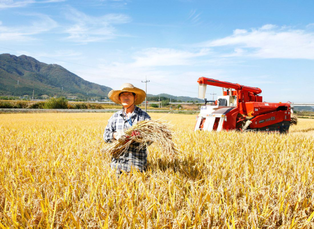 土地都坏了,农民究竟该如何变富裕?