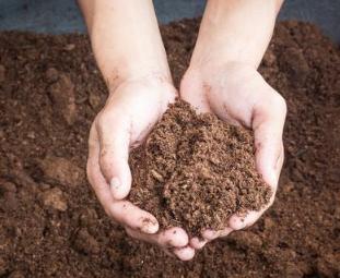 调节土壤,这种情况千万不能使用生石灰