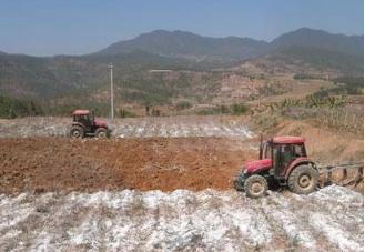 土壤撒生石灰是为了什么?