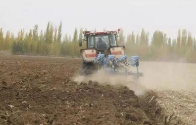 播种前土壤准备的技术要求