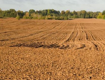 黏土、沙土、壤土、水田和旱地等不同土壤的特性,你都知道吗?