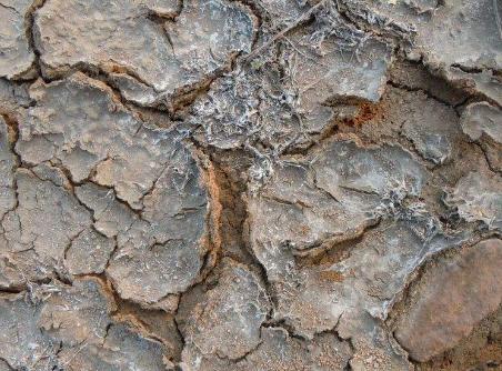 土壤次生盐渍化难题如何破解?