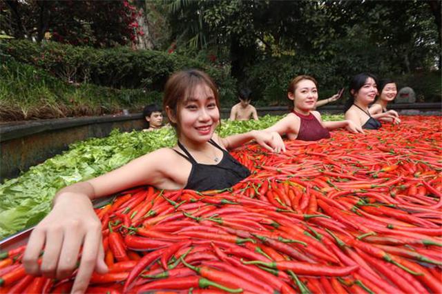 碳氢科学1200问之015组:从碳氢番茄茄子到碳氢辣椒秋葵