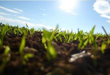 北方半湿润半干旱区应慎用畜禽粪肥中国科学院南京土壤研究所的一个团队,通过对我国南北方9块长期定位施肥