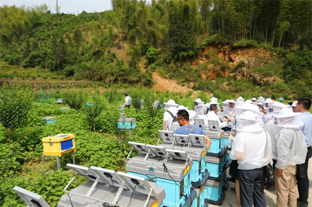"""新一代智能蜂箱亮相""""首届中国数字化蜂业高质量发展峰会"""""""