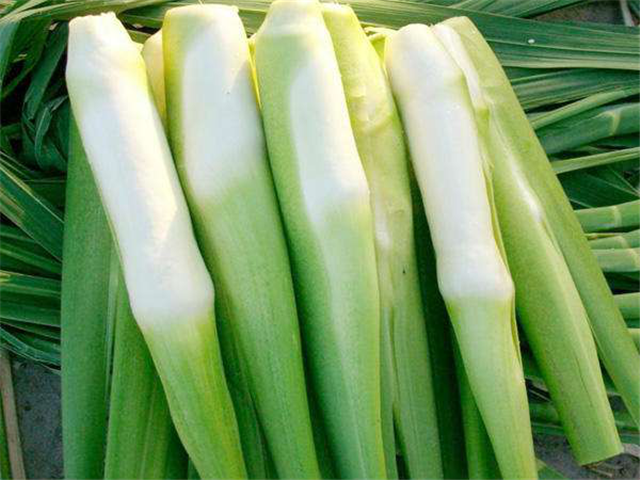 碳氢科学1200问之018组:从碳氢芹菜莴笋到碳氢茭白榨菜