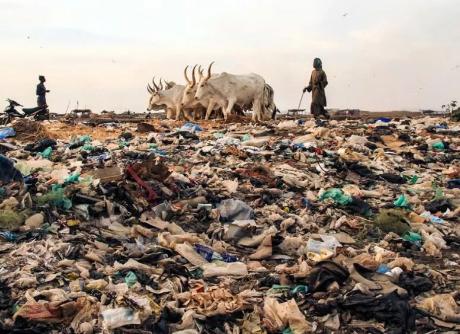 土壤污染:隐藏的现实!