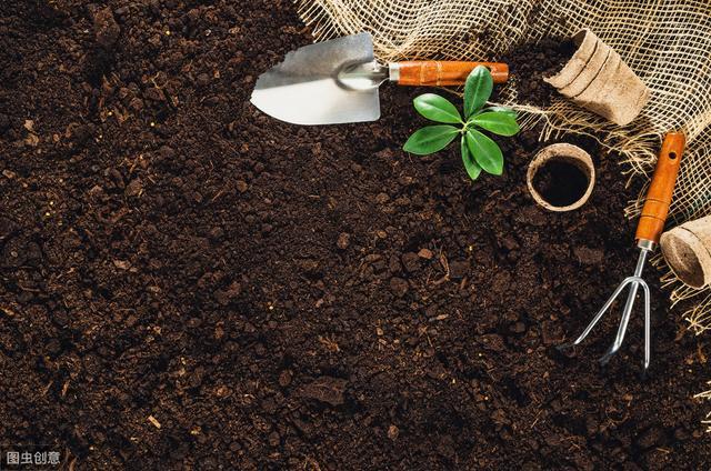 土壤为何越改越差,究竟有什么办法能拯救?