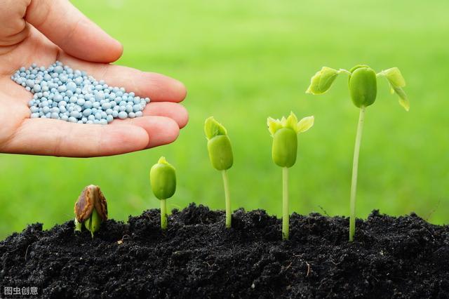 肥料放久了还能用吗?不要忽略了肥料的保质期
