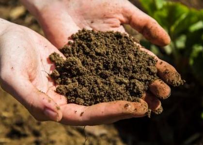 老农民都知道,红色、黄色等亮丽土壤可不咋的,黑乎乎才有好肥力