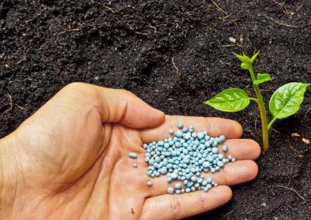 土壤改良越改越差?这几个土壤改良误区一定要注意!