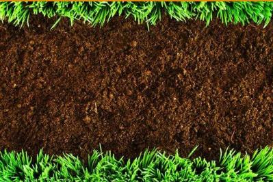 长期追求高产,我国土壤已严重透支!警惕土地'过劳死'
