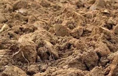 为什么种农作物前深耕土壤,有什么用?跟耕种层有关,多方面改善