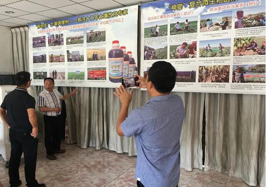 """向槟榔癌症""""宣战,华宏生物与椰子研究所达成战略合作"""