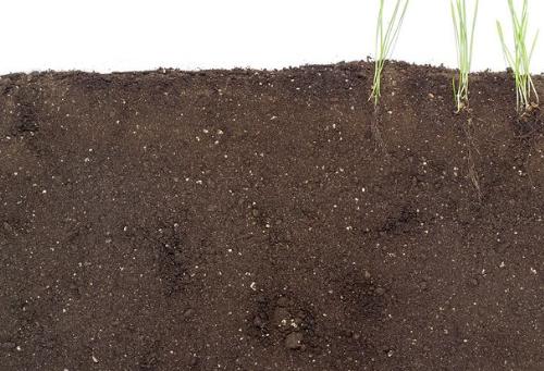 从源头消除土壤污染对粮食安全的威胁