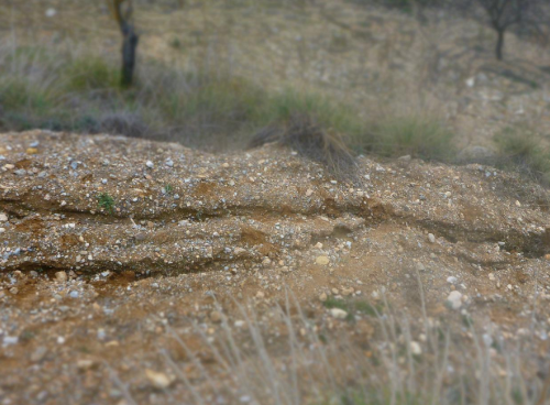 土壤侵蚀如何影响我们的土壤寿命