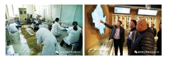 重磅官宣:绿速达农化技术服务中心在黑龙江省农科院正式挂牌