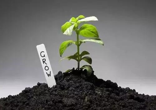 不用再找了!最全的土壤修复再利用技术汇总!