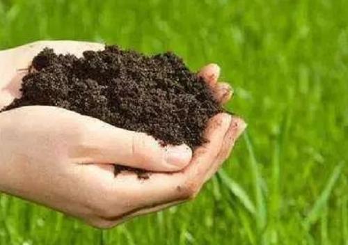 理想的健康土壤该是什么样?