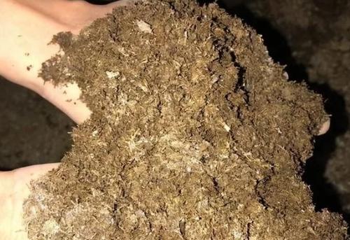 肥料相生相克大全,尽可能做到平衡施肥!